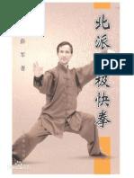 Northern School of Fast Taijiquan(Xue Jun, Xieshou Zhong) CH