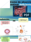 Sx de Absorción Intestinal Deficiente.