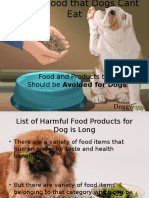 Foods Dog Shoudnt Eat- Sources and Their Impact on Dog Health