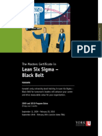Lean Six Sigma - Black Belt