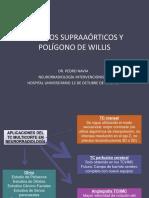 31 Trocos Supraaorticos y Poligonos de Willis