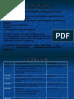 metodologia II - Clase II