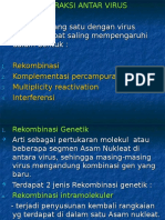 interaksivirus-3