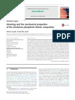 Calcium Phosphate Composites