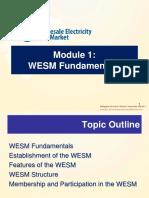 Module 1-WESM Fundamentals