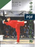 Chinese Shaolin Quan Series - Standardized routines (Zhang Shan) 1998