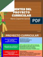 Fuentes Del Proyecto Curricular