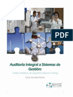 Auditoria Integral a Sistemas de Gestion