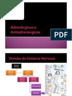 Adrenérgicos e Antiadrenérgicos