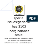 Berg Balance Scale