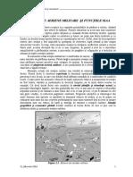 Misiunile SIAA P5 10