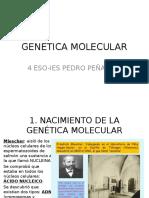 genetica molecualr