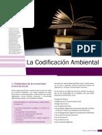 Articulo La Codificacion Ambiental