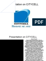 Final Asignment on CITYCELL