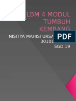 Lbm 4 Modul Tumbang