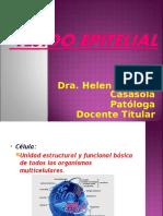 Tejido Epitelial (Histologia de Ross y Paulina)