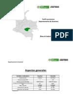 Perfil Departamento Guaviare 06072015
