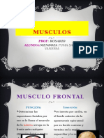 Musculo Fisioterapia