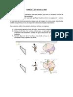 Transcripción Cerebelo y Nucleos de La Base