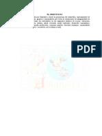 ACTA ONG DNA(2)