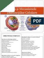 Cursul 2 - Celula Si Mecanismele Disfunctiilor Celulare
