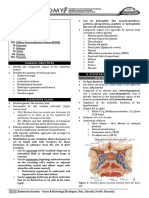 [ANA] 5.02.2 Endocrine System_Tan