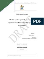 Informe Cadenas MaizCarneBovinaQueso Nicaragua
