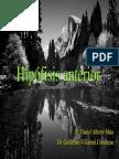 35 Hipofisis Anterior