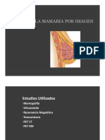 Glandula Mamaria Por Imagen