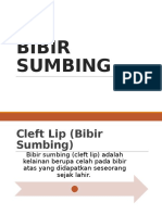 Bibir Sumbing Tessa Ppt
