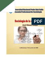 Sociologia de La Organizacion Gomez Cumpa Jose 276