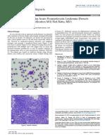 A Case of Hypergranular Acute Promyelocytic Leukemia Frenchamericanbritish Classification