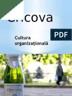Docslide.us Cultura Organizationala Cricova