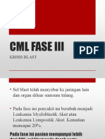 Faris Pbl Dr Tuti Cml Fase 3