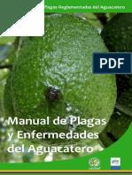 Manual Aguacate