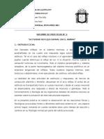 Informe de Prácticas n 2