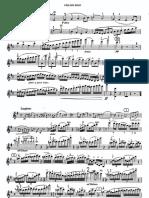 Beethoven ViolinConcerto Violin