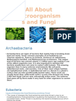 microorganisms and fungus booklet