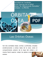 orbitaosea