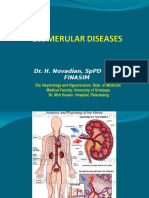 Penyakit –Penyakit Glomerulus
