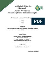 Proyecto Formulacion y Ev. de Proyectos