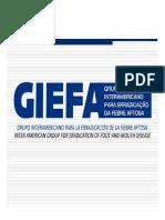 5aCOSALFAExtra_GIEFA_SGuedes