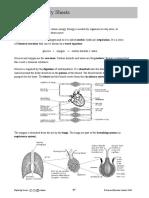 8B Summary Sheet