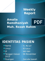 Weekly Report BPH Amel