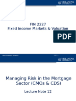 Managing Risk in the Mortgage Sector (CMO and CDS)
