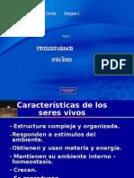 Organizacion Molecular