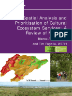 CES_spatial_analysis_tools_review_2102 (1).pdf