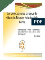 Los Bienes Comunes, Principios de Vida en Las RNSC
