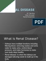 renal disease presentation