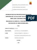 cultivo-hidroponico-informe